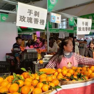 农博会买的橙子长得像橘子